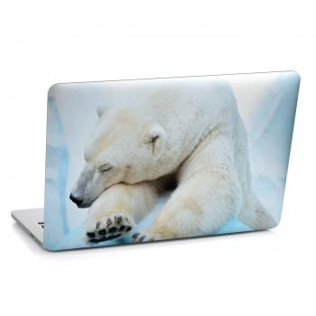 Samolepka na notebook - Lední medvěd
