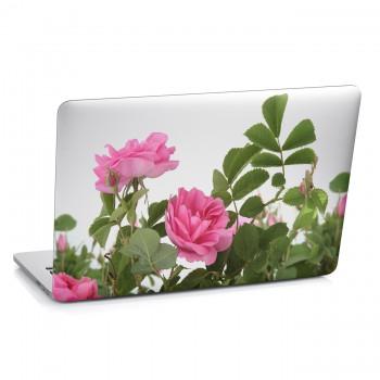 Samolepka na notebook - Plané růže