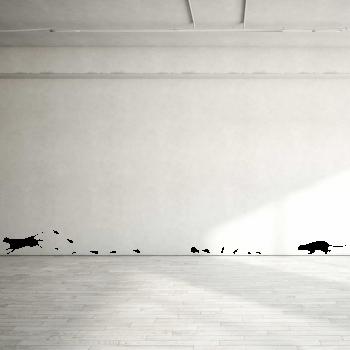 Samolepka na zeď - Kočky a myšky set