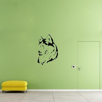 Samolepka na zeď - Malamut