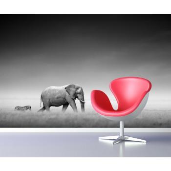 Tapeta - Slon a zebra