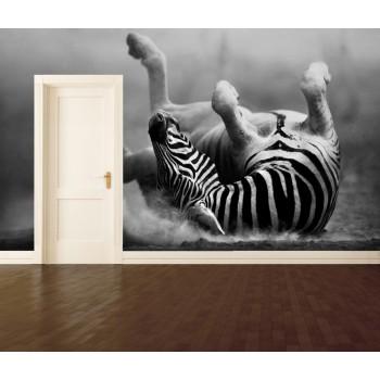 Tapeta - Zebra na zádech