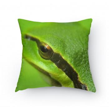 Polštářek - Žába