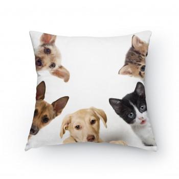 Polštářek - Koťata a štěňata