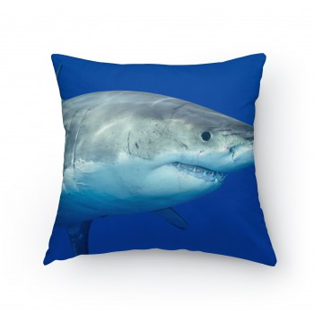 Polštářek - Žralok