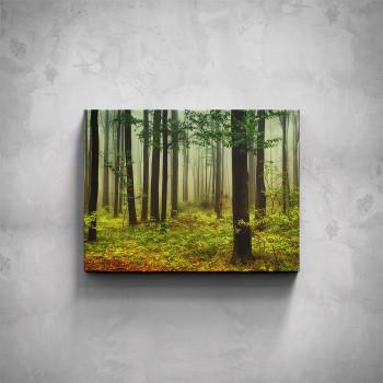 Obraz - Listnatý les