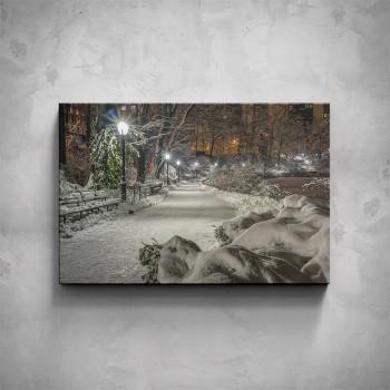 Obraz - Zasněžený park