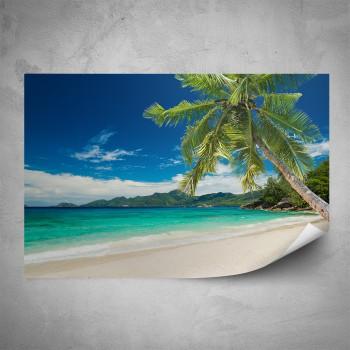 Plakát - Pláž s palmou