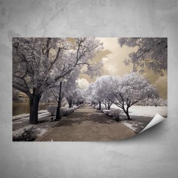 Plakát - Zimní park