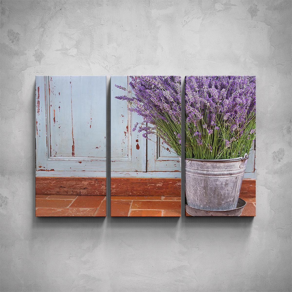 3-dílný obraz - Levandule v květináči - PopyDesign