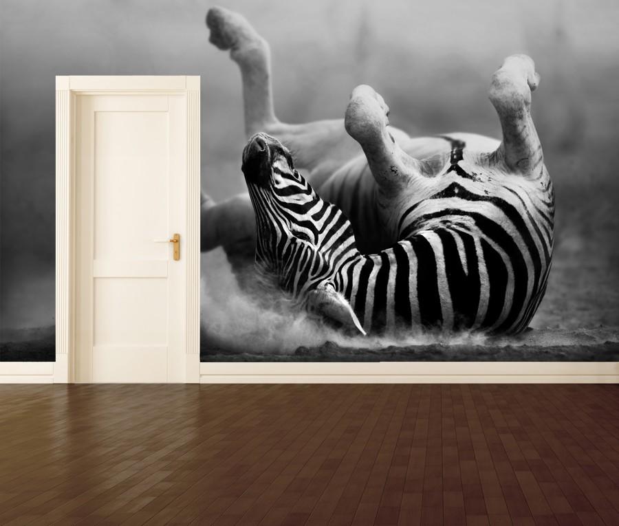 Tapeta - Zebra na zádech - 120x80 cm - PopyDesign