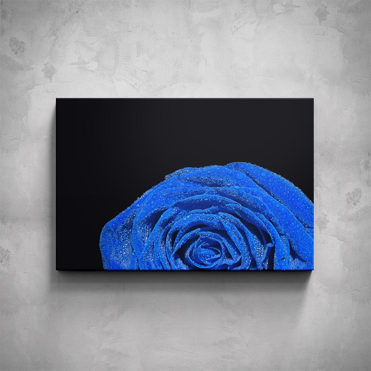 Obraz - Modrá růže detail - PopyDesign