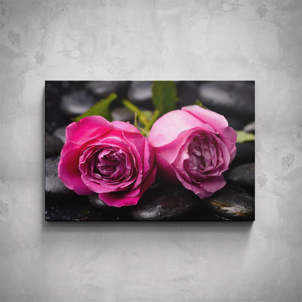Obraz - Růže na kamenech - PopyDesign